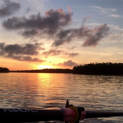 Rowing in the Florida sun set. Beautiful to watch